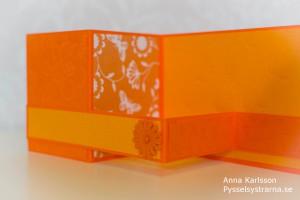 OrangeKort-2