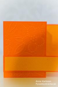 OrangeKort-4